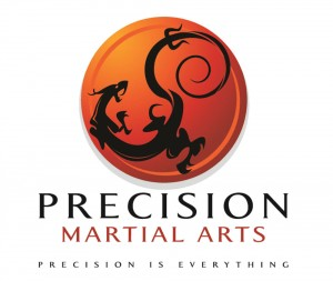 andrew_reynolds_precision_martial_arts-300x253